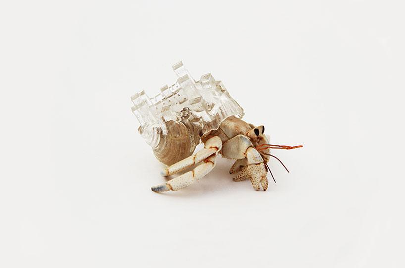 aki-inomata-hermit-crab-shells-designboom-11
