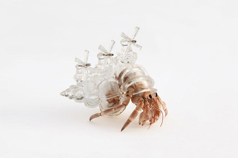 aki-inomata-hermit-crab-shells-designboom-10