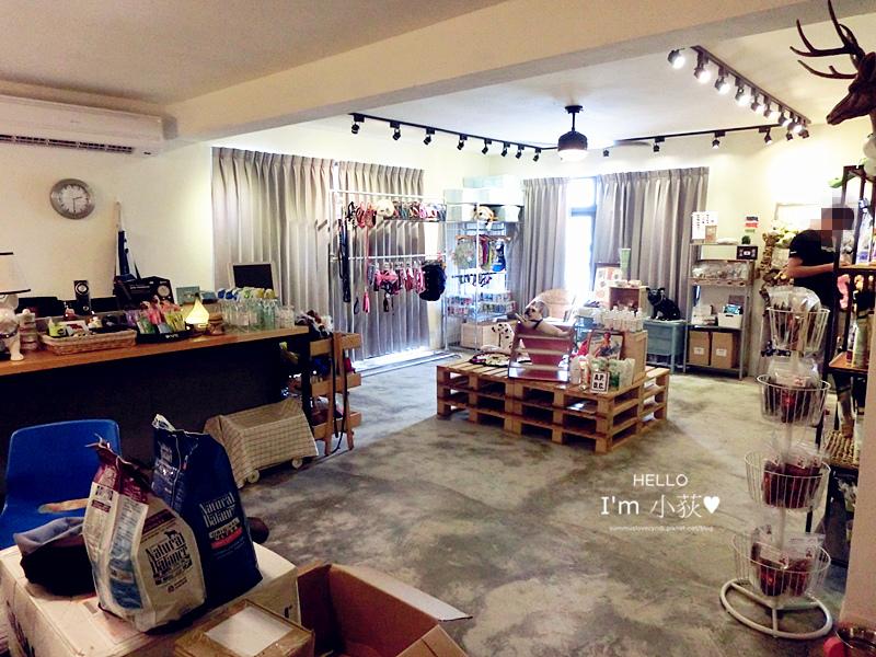 CIMG4697_副本.jpg