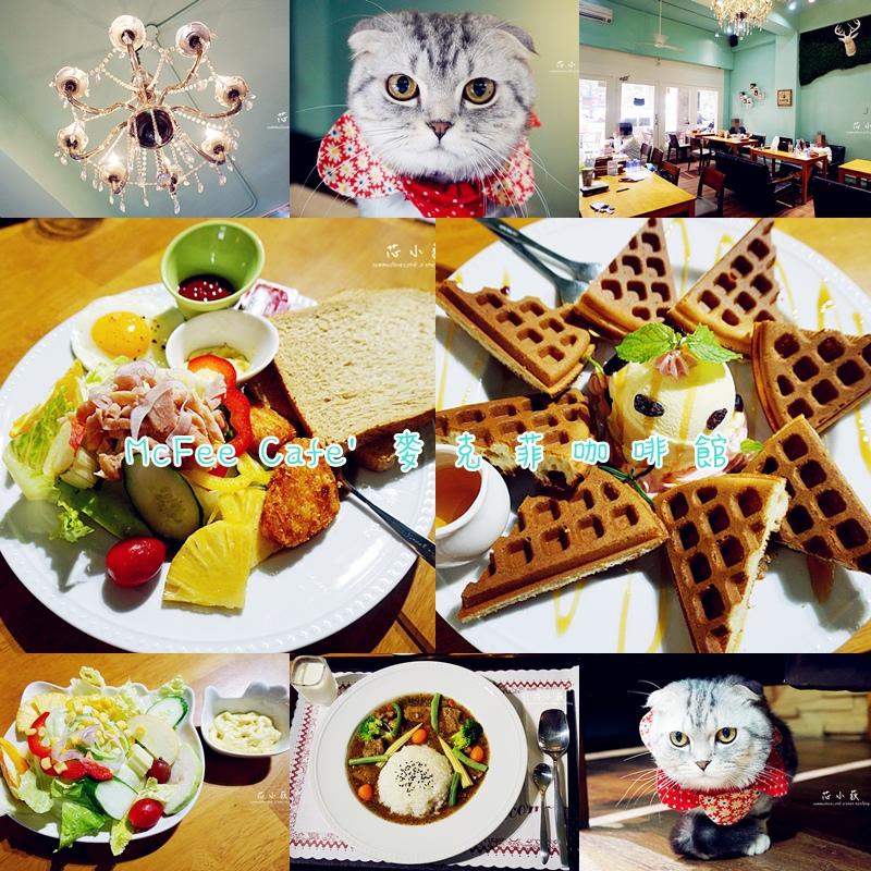 cats麥克菲.jpg