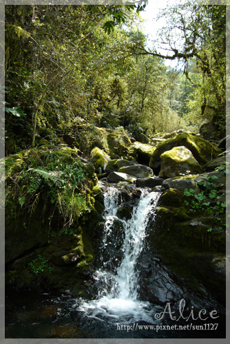 沁涼的溪水,洗淨一天的疲憊~