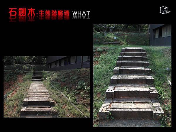 生態階梯磚-14.JPG