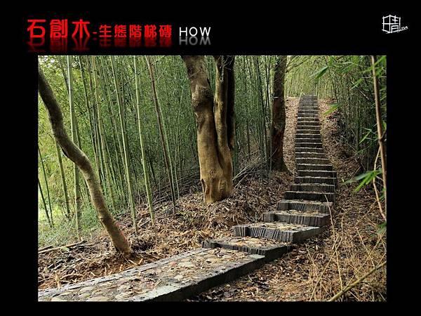 生態階梯磚-10.JPG