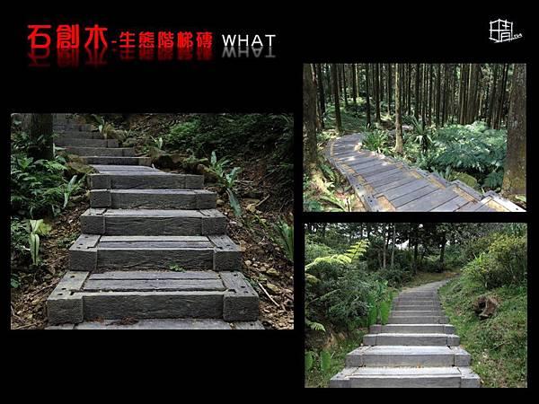生態階梯磚-12.JPG