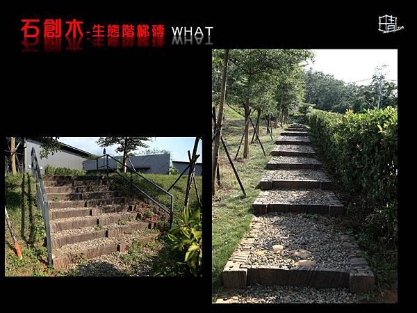 生態階梯磚-15.JPG