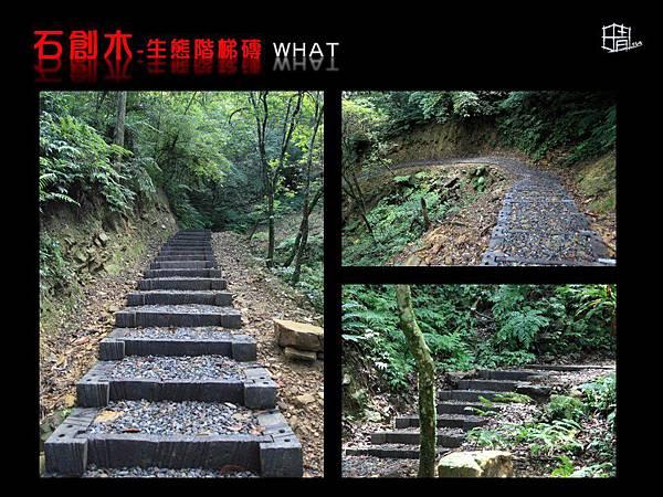 生態階梯磚-13.JPG