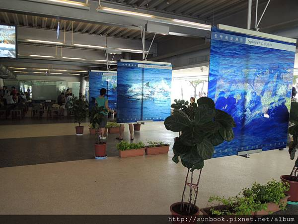 烏石港衝浪行程規劃2