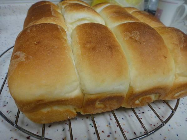 中種-微波麵包
