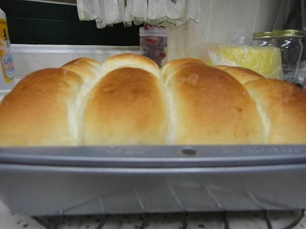 中種-微波麵包出爐