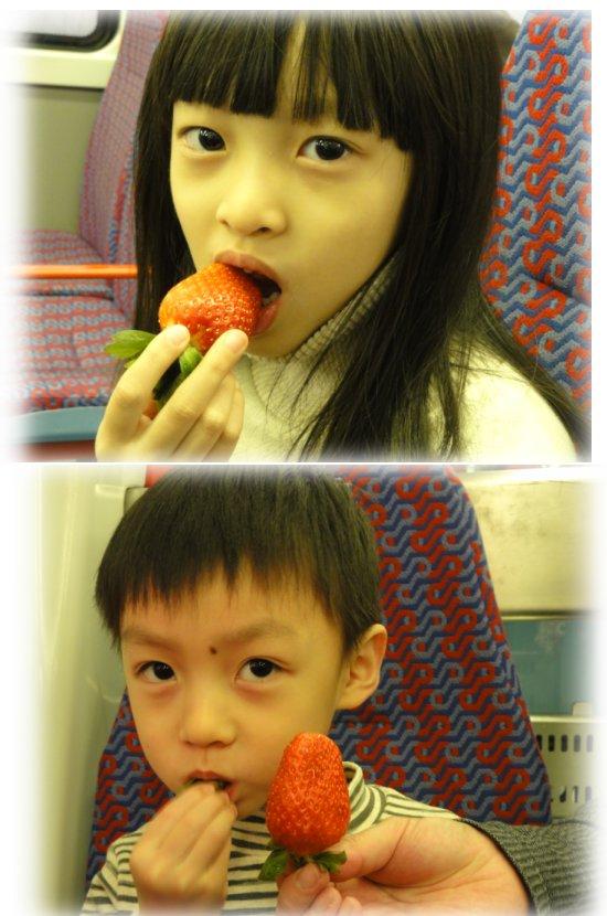 067-草莓.JPG