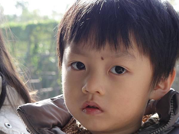 嶺南印象園-7
