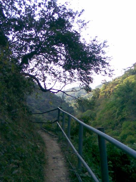 步道旁邊是高十幾樓的懸崖2.jpg