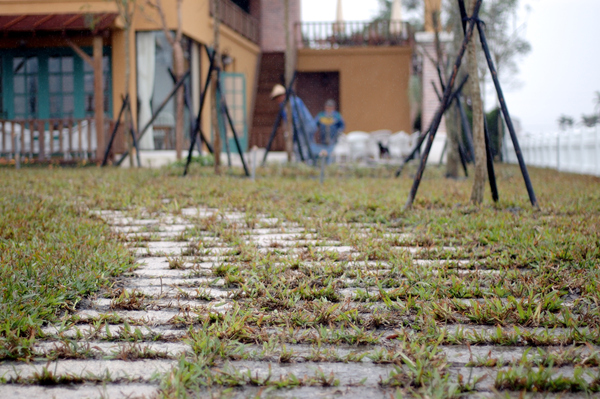 Sunday Home 重新鋪設的花崗石步道 【宜蘭民宿】