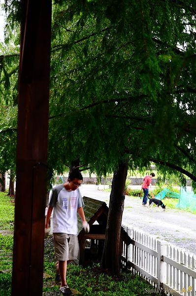 20120801 蘇拉颱風 【宜蘭民宿】Sunday Home