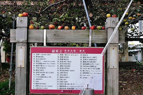 【宜蘭旅遊景點推薦】20141126 福壽山農場/梨山蜜蘋果 【宜蘭民宿】Sunday Home