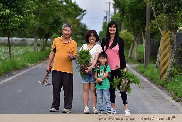 【宜蘭景點推薦】20200429 張美阿嬤農場 【宜蘭民宿】Sunday Home