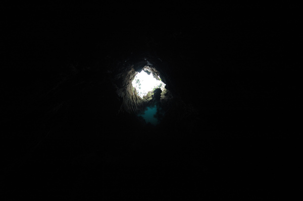 【宜蘭旅遊景點推薦】神木的故鄉-馬告生態公園 【宜蘭民宿】Sunday Home