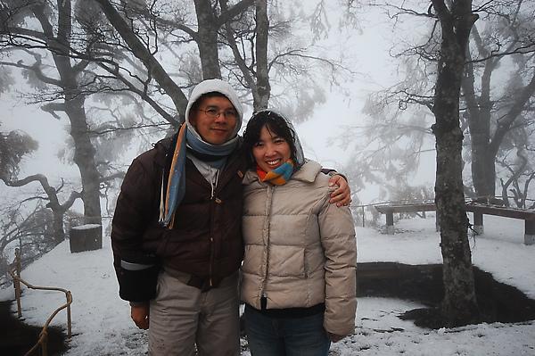 【宜蘭旅遊景點推薦】太平山-台灣山毛櫸步道 【宜蘭民宿】Sunday Home