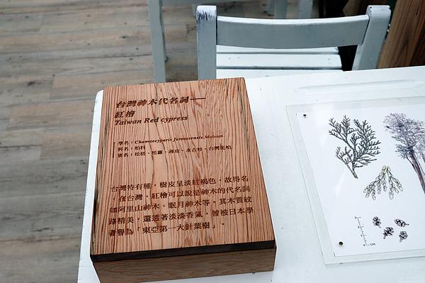 【宜蘭旅遊景點推薦】2010 綠色博覽會 【宜蘭民宿】Sunday Home