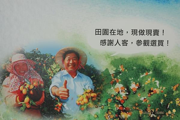 【宜蘭旅遊景點推薦】橘之鄉形象蜜餞館 【宜蘭民宿】Sunday Home