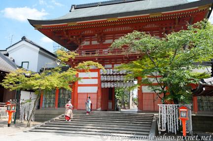 八坂神社見藝妓