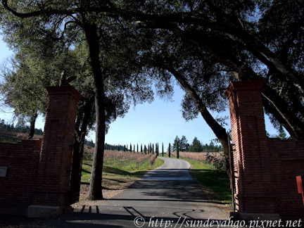 Castello di Amorosa酒莊