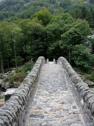 佛薩斯卡峽谷跳躍之橋