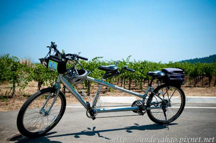 北加州索諾瑪Healdsburg自行車之旅