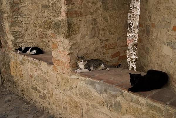 673_城堡與貓.jpg