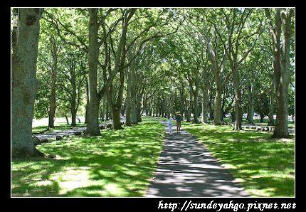 康維爾公園