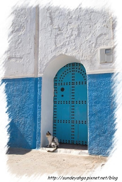 貓與藍色大門