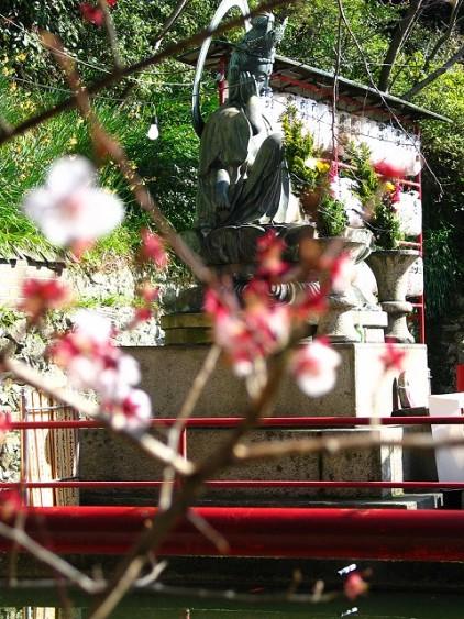櫻花裡的菩薩