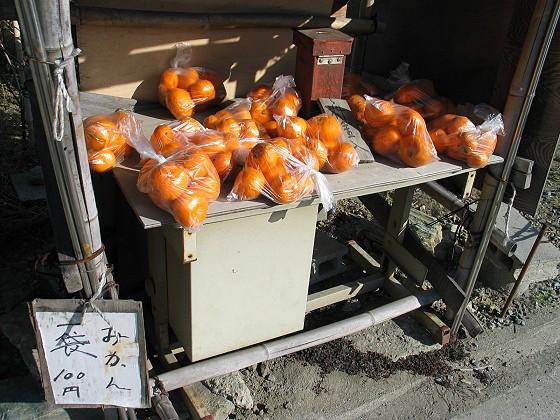 無人看管的橘子攤