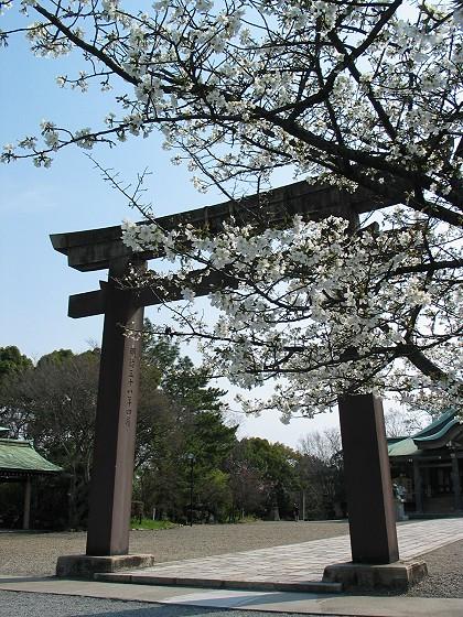 櫻花裡的豐國神社