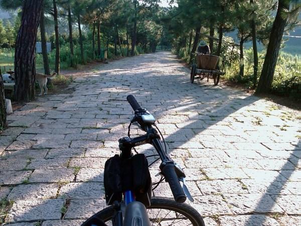 天童寺前的石板路.jpg