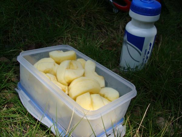 開始野餐囉蘋果.JPG