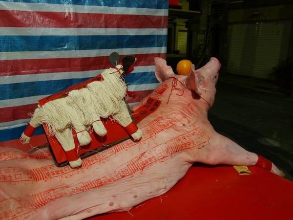 有豬有羊.JPG