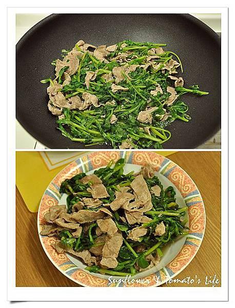 新菜色-白花馬齒莧1.jpg