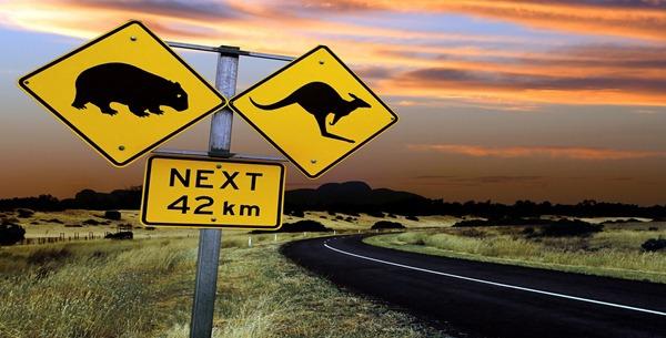 bigstockphoto_Australian_Road_Sign_19483611_thumb