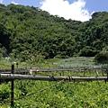 大家熱烈與獵人古道導覽哥哥合照_477.jpg