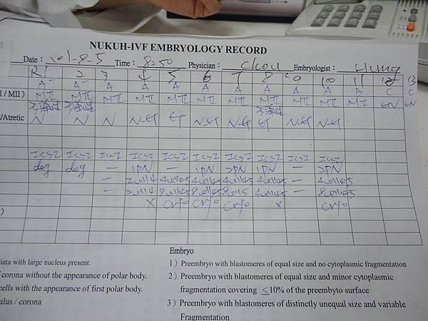 2012.08.10胚胎分裂紀錄