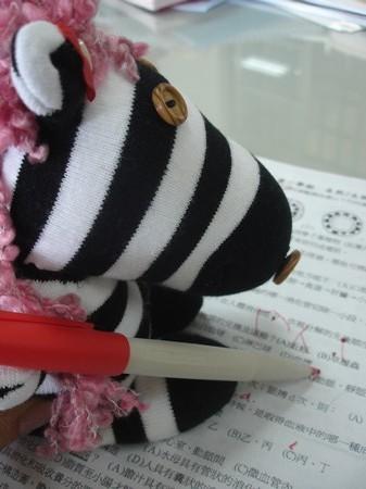 襪子娃娃2.JPG
