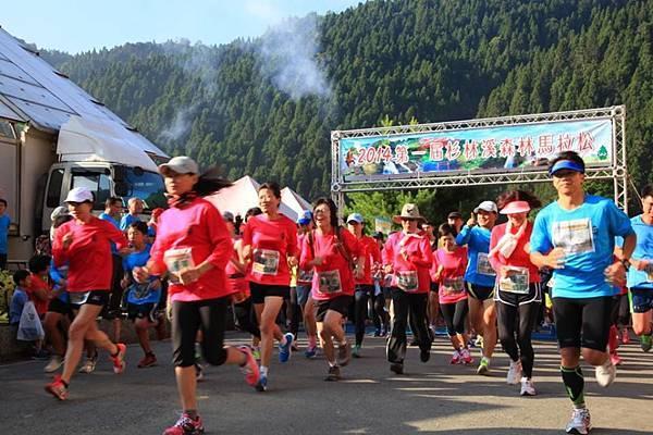 2015路跑活動