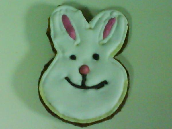 彩繪餅乾小白兔