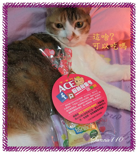 2010.03.17-ACE-果汁軟糖 (3).JPG