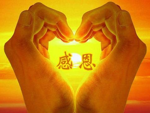xin_112110624161820307011