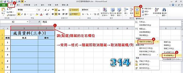 Excel 2010隱藏4