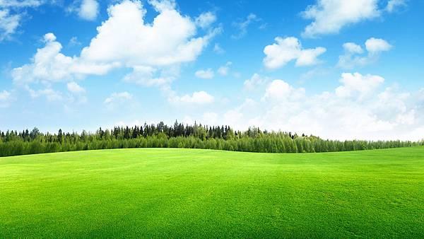 草地遮罩01.jpg