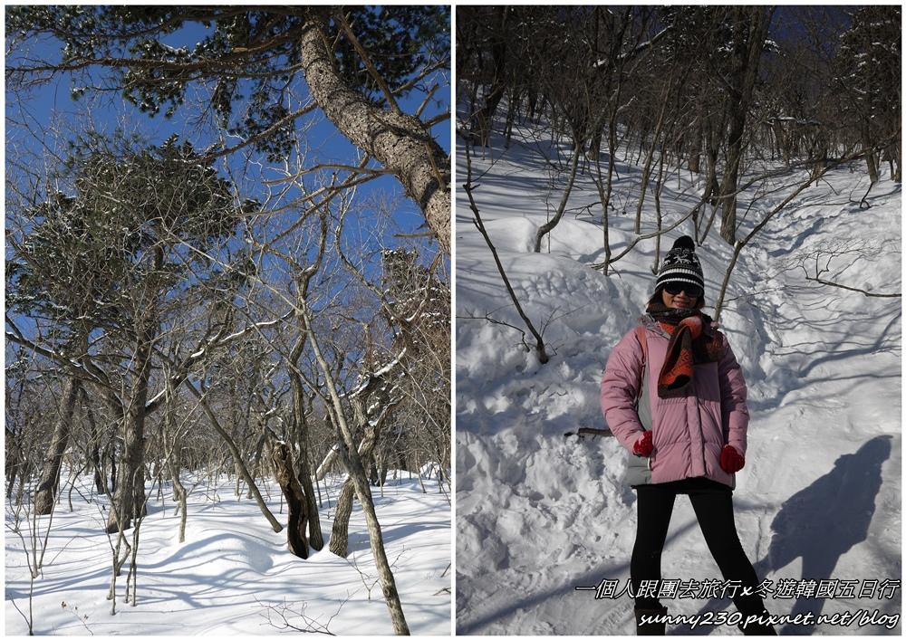 2012冬遊韓國五日行-day3-20.jpg