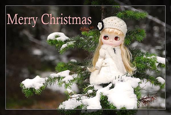 雪淚雪地聖誕卡01.6500.jpg